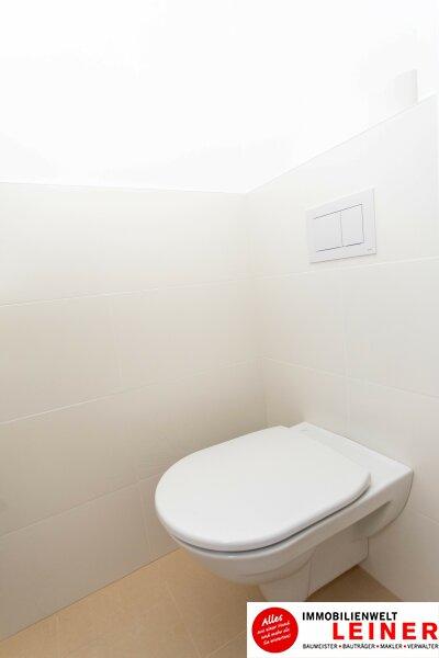 Schwechat: Erdgeschoss in saniertem Einfamilienhaus zu mieten Objekt_10789 Bild_264