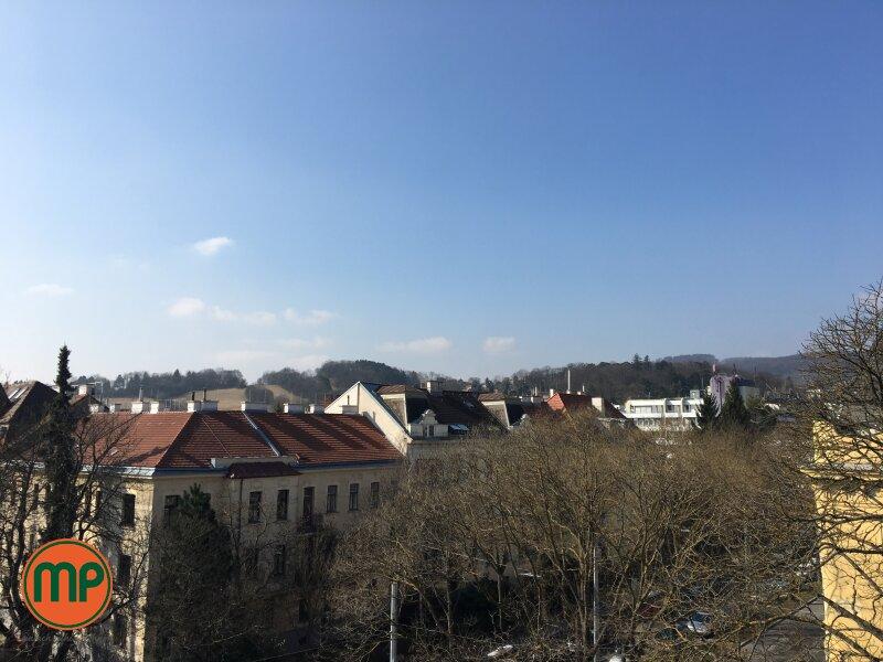 Pärchenwohnung mit Turmzimmer und Galerie /  / 1130Wien / Bild 1