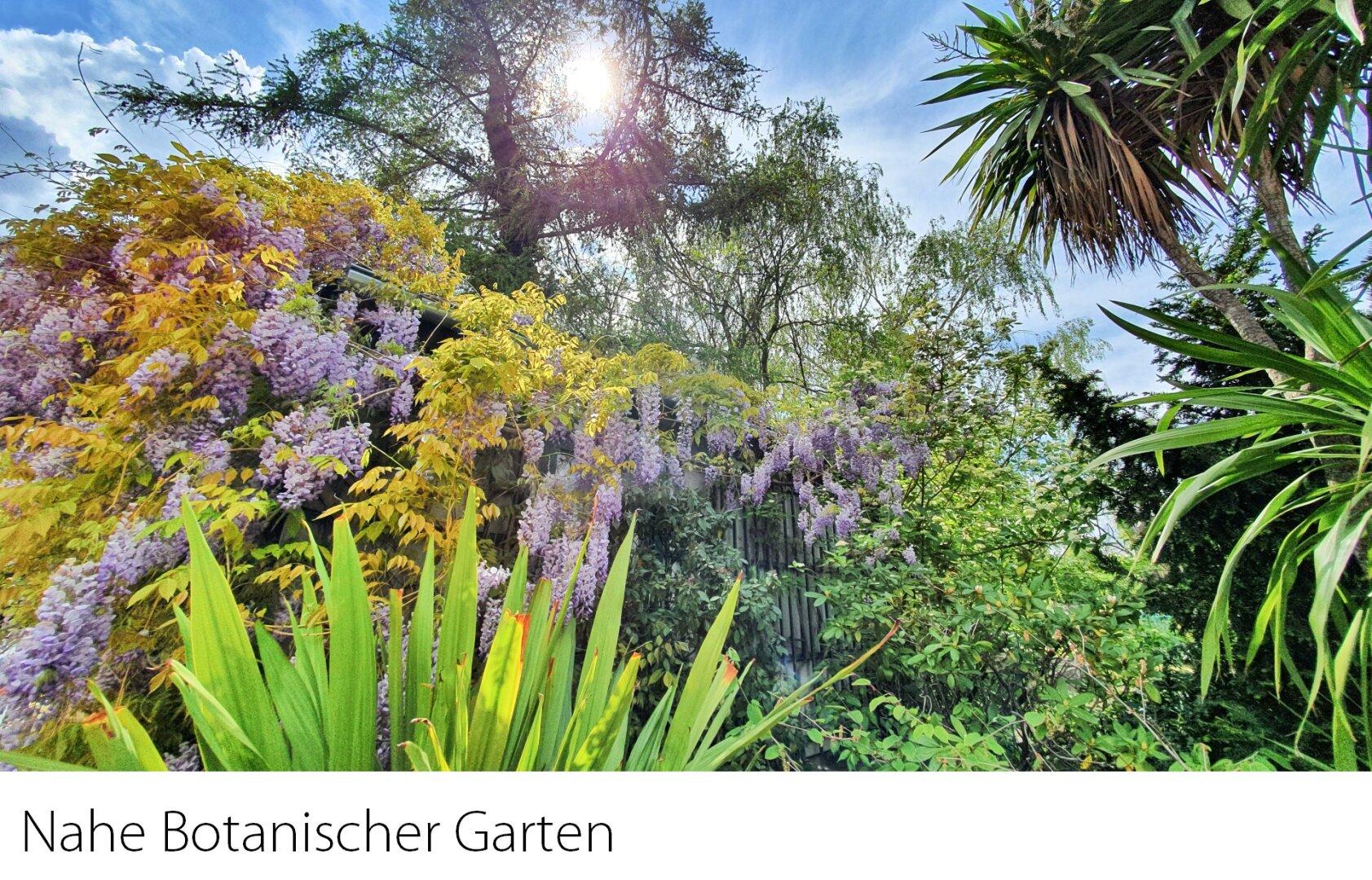 Nahe Botanischer Garten