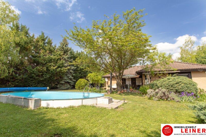 Ihr Haus * BUNGALOW* in Schwadorf mit 1077 m² Grund und Pool - verbringen Sie den nächsten Sommer im eigenen Garten Objekt_8819 Bild_648
