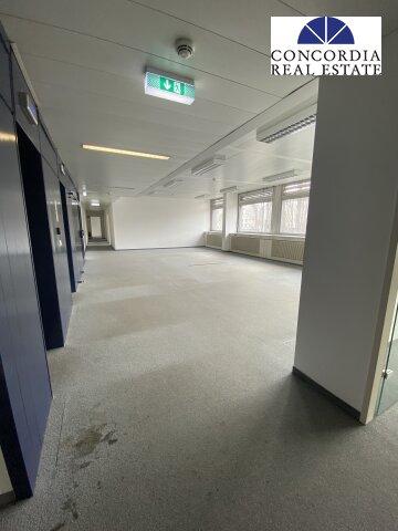 Eingangsbereich_Lift führt direkt in die Fläche