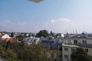 Süße Dachwohnung in Sievering