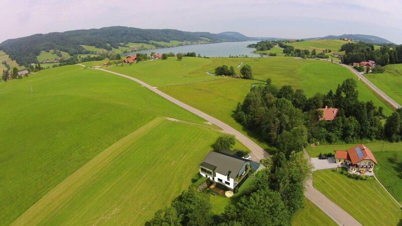 Irrseeplantscherl/Gartenwohnung    (450m² Rasen+Terrasse)