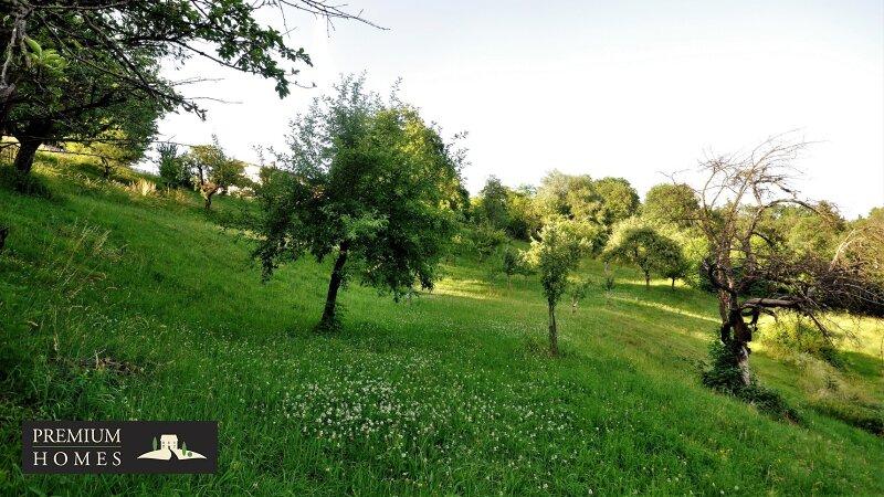 BREITENBACH am Inn - Alte Villa auf riesigem Grundstück zur Sanierung_direkte Umgebung