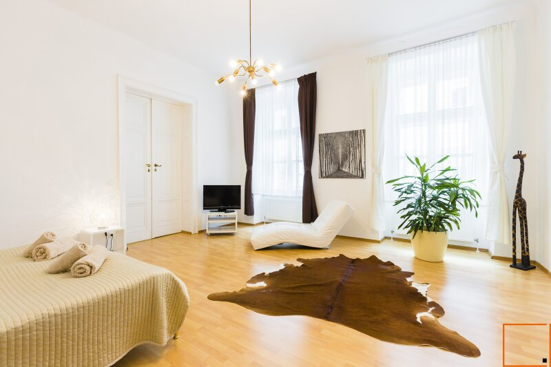 Fully furnished - classical Viennese apartment in downtown next Sterngasse
