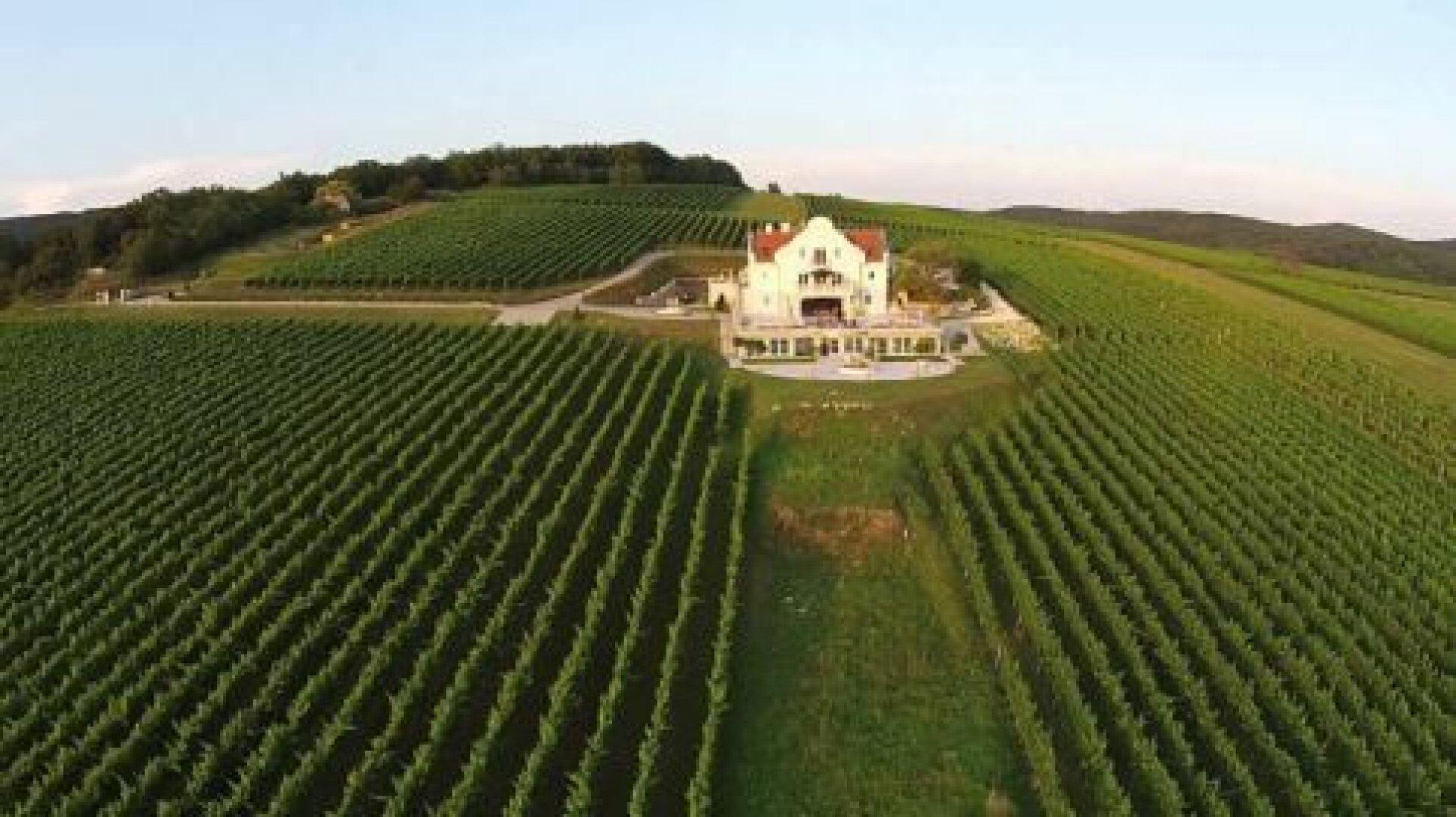 10 Hektar WEingut mit Schloss