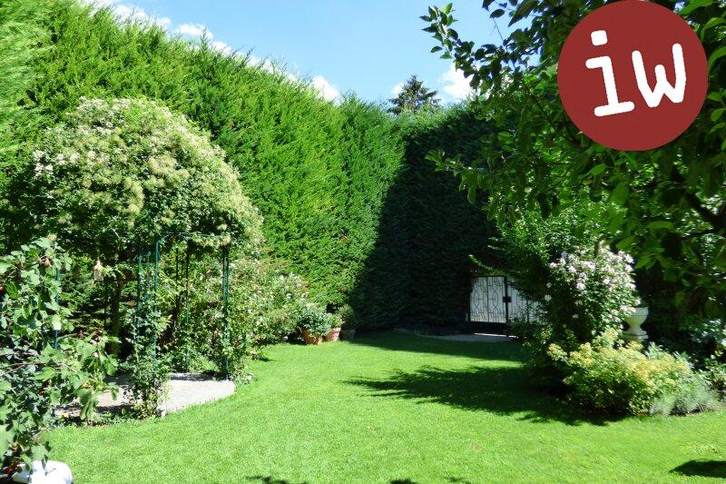 Stilvolles Wohnen in Klosterneuburgs Stadtzentrum, traumhafter Garten Objekt_607 Bild_11