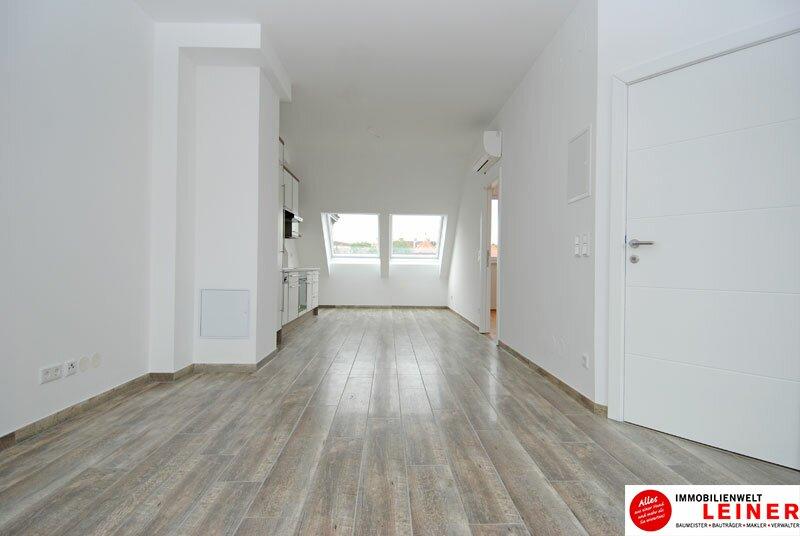 Wunderschöne Penthouse Wohnung mit großer Dachterrasse zu mieten! Objekt_9835