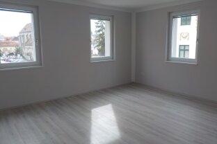 Neuwertige und wunderschöne 1-Zimmer Mietwohnung im Herzen von Wr. Neustadt in der Nähe der Fußgängerzone