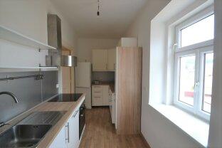 Sehr schöne großzügige Wohnung mit neuwertiger Küche