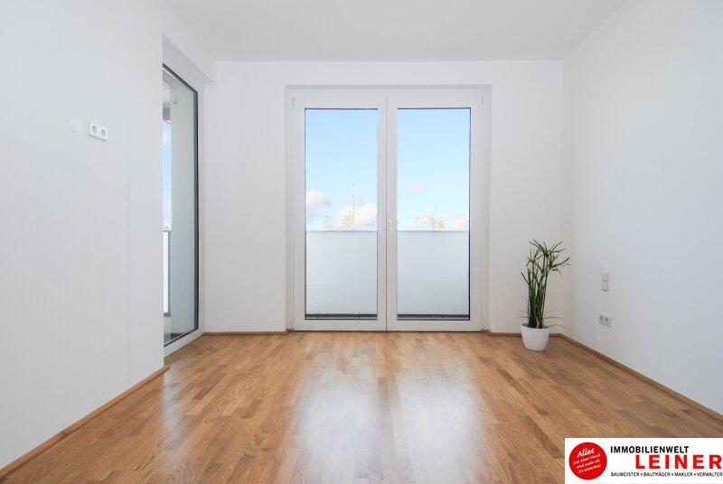 *UNBEFRISTET*Terrasse * Schwechat - 2 Zimmer Mietwohnung im Erstbezug mit großer Terrasse Objekt_8868