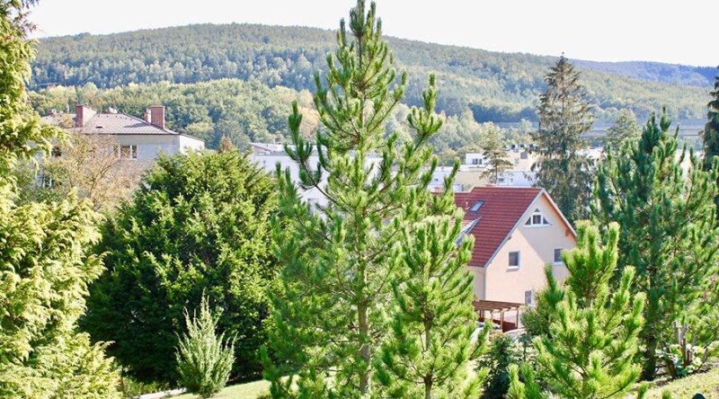 TERRASSENTRAUM - Elegante Doppelhaushälfte in Massivbauweise - schlüsselfertig - inklusive 2 Stellplätzen /  / 3021Pressbaum / Bild 5