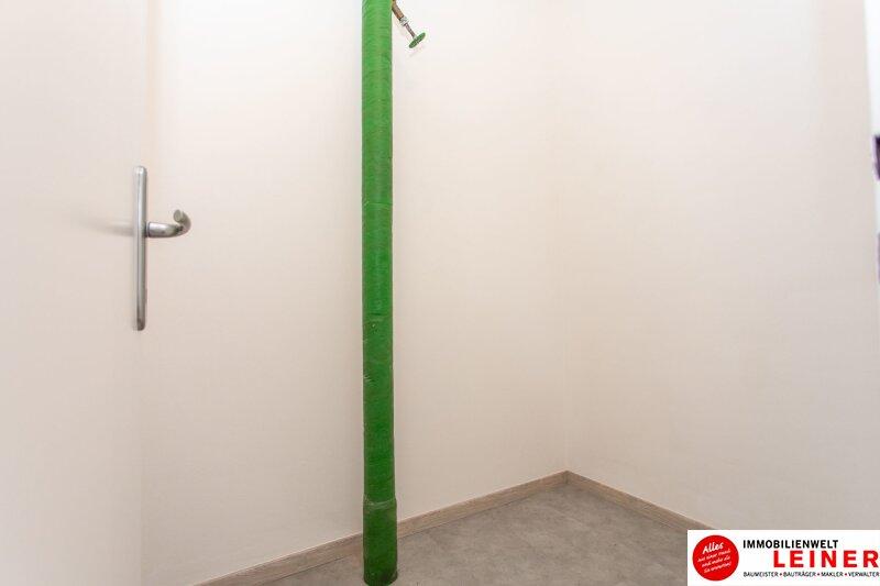 Schwechat - 2 Zimmer Mietwohnung Erstbezug nach Renovierung Objekt_11583 Bild_183