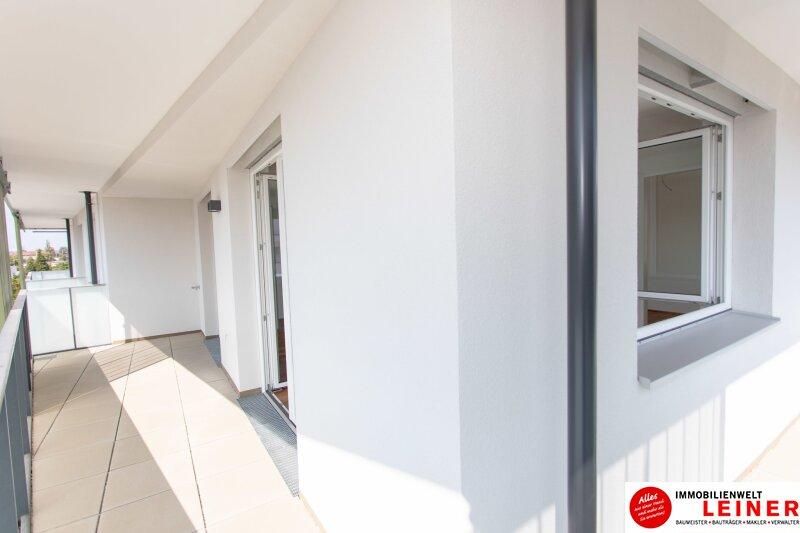 *UNBEFRISTET*Schwechat - 2 Zimmer Mietwohnung im Erstbezug mit großer Terrasse und Loggia Objekt_8692 Bild_137