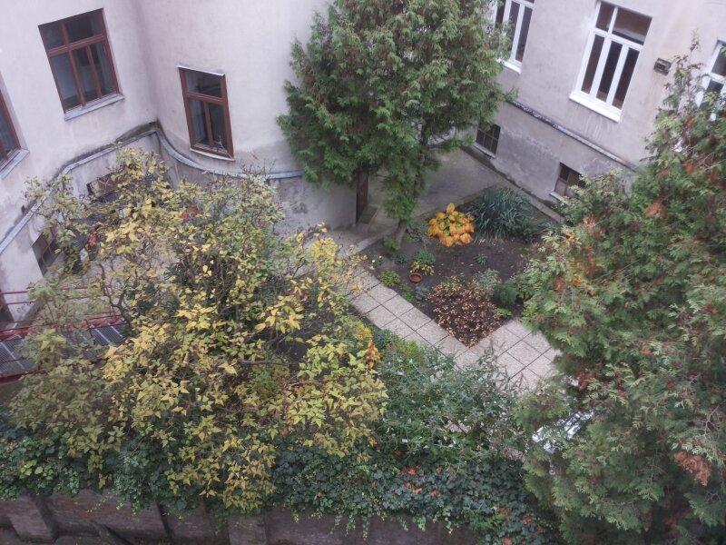 HOFSEITIGE ALTBAUWOHNUNG - 1 Zimmer - Parkett - U3 NÄHE /  / 1140Wien / Bild 0