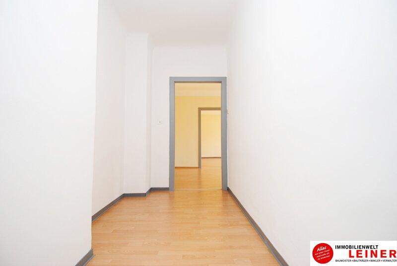 Schwechat Eigentumswohnung - 2 sonnendurchflutete Zimmer mit Blick in den liebevoll begrünten Garten Objekt_8776 Bild_435