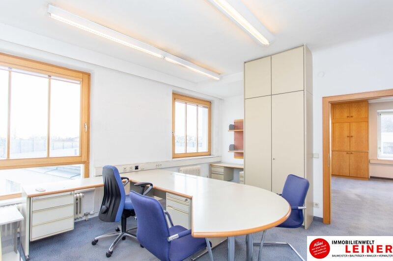 Modernes Büro im Zentrum von Schwechat - Hier werden Sie gesehen! Objekt_10369 Bild_221