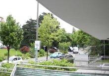 Terrassenwohnung am Türkenschanzplatz! Miete inkl.Garage & Heizkosten!