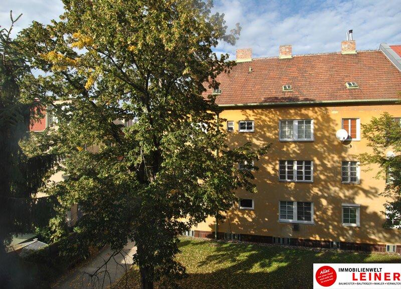 Schwechat: ideales Arbeiterquartier - 1 Zimmer Mietwohnung in Bahnhofnähe! Objekt_9822 Bild_432