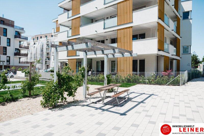 Schwechat - Penthouse - inklusive 28 m² Terrasse Objekt_9966 Bild_286