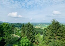 Dreamlike apartment in castle in Allerheiligen bei Wildon