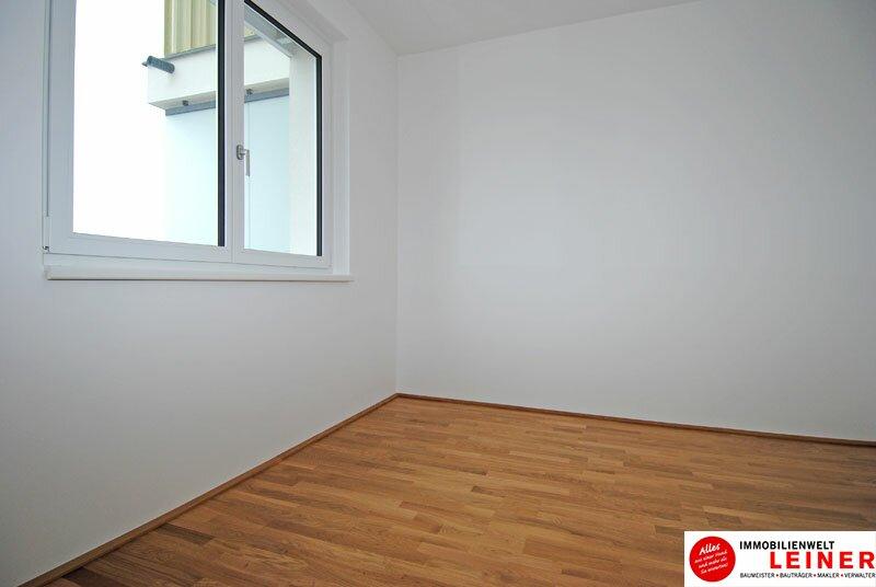 Schwechat - 2 Zimmer Mietwohnung im Erstbezug Objekt_3764 Bild_34