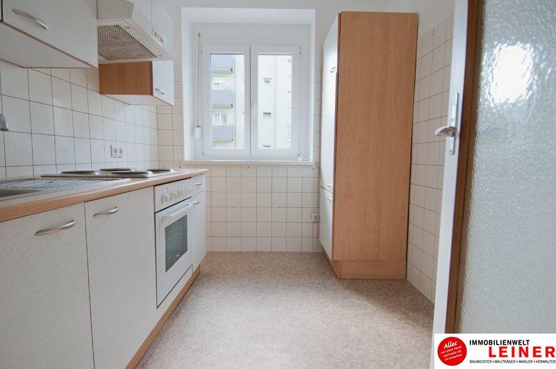 Schwechat - gepflegte 2 Zimmer Mietwohnung direkt beim Stadtpark Objekt_9826