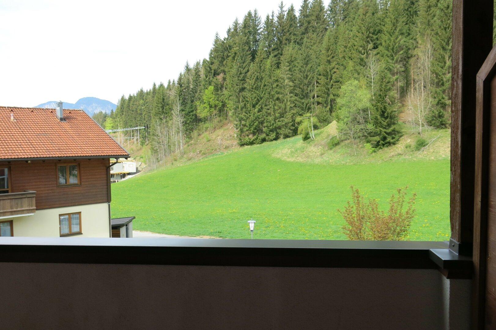 Ausblick Terrasse, 4-Zimmer-Wohnung, Scheffau am Wilden Kaiser