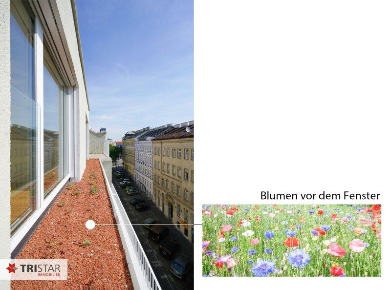 Neubau Terrassenwohnung - sehr hell  inkl. Küche ! /  / 1150Wien / Bild 17