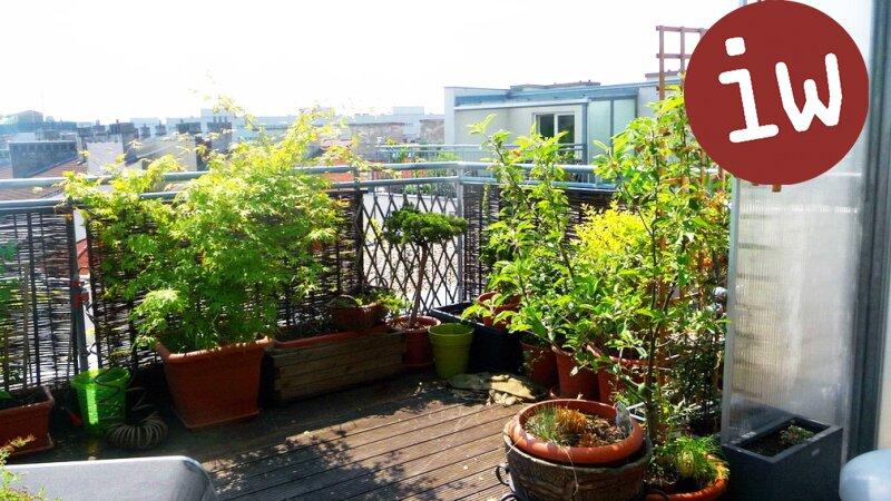Top-gepflegte Dachgeschosswohnung mit herrlicher Terrasse Nähe UNO- City! Objekt_592 Bild_159