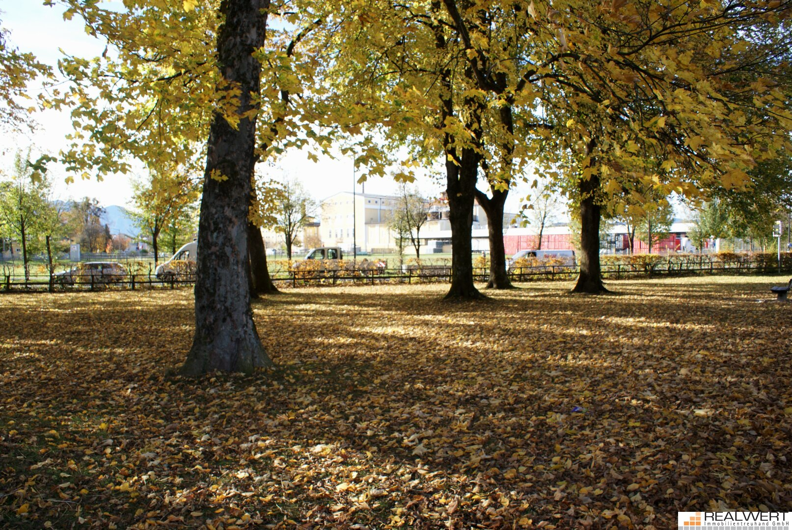 Goldener Herbst in Maxglan - Riedenburg