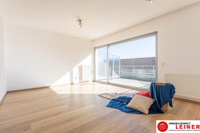 Ebergassing - 3 Zimmerwohnung im Zentrum Objekt_11143