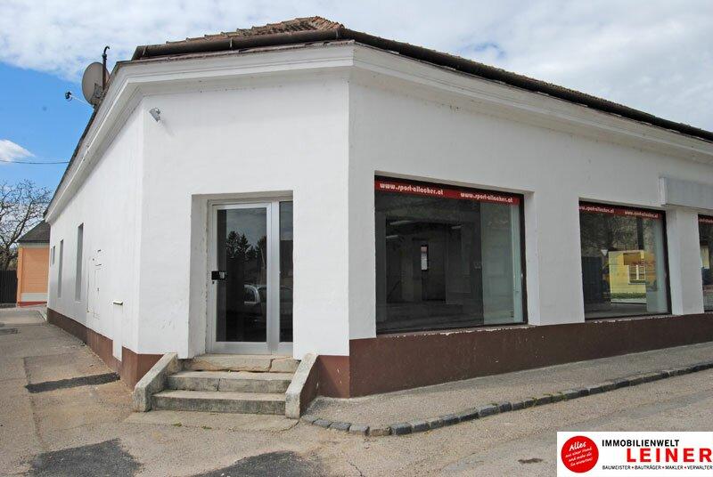 Geschäftslokal in Ebergassing Objekt_1353