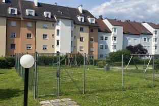 Single-Hit in Krems