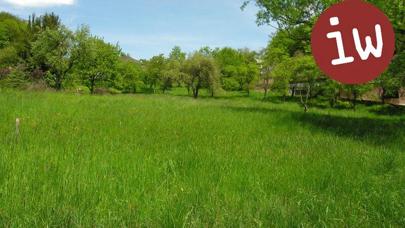 Schönes, sonniges, ebenes Grundstück in Weidlingbach! Objekt_586