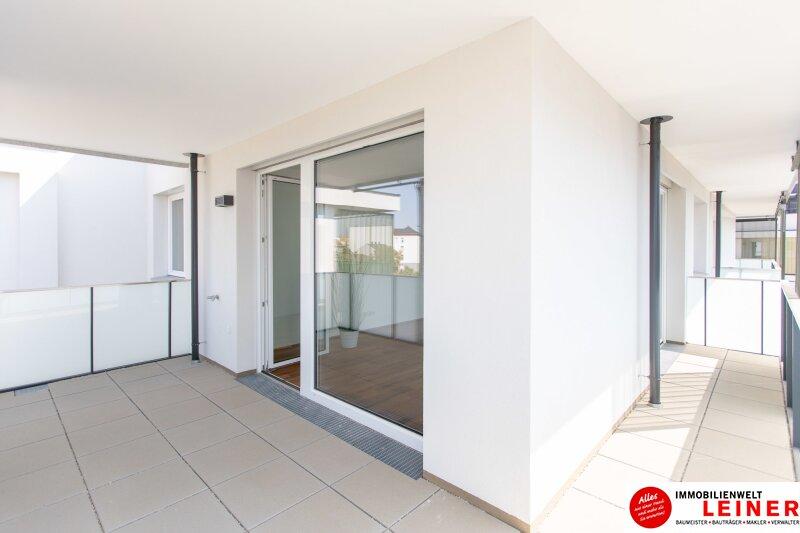 *UNBEFRISTET* Schwechat - 2 Zimmer Mietwohnung im Erstbezug mit großer Terrasse und Loggia Objekt_9406 Bild_474
