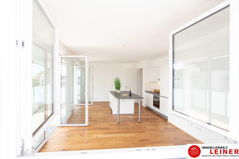 *UNBEFRISTET*Schwechat - 2 Zimmer Mietwohnung im Erstbezug mit großer Terrasse und Loggia Objekt_8692 Bild_130