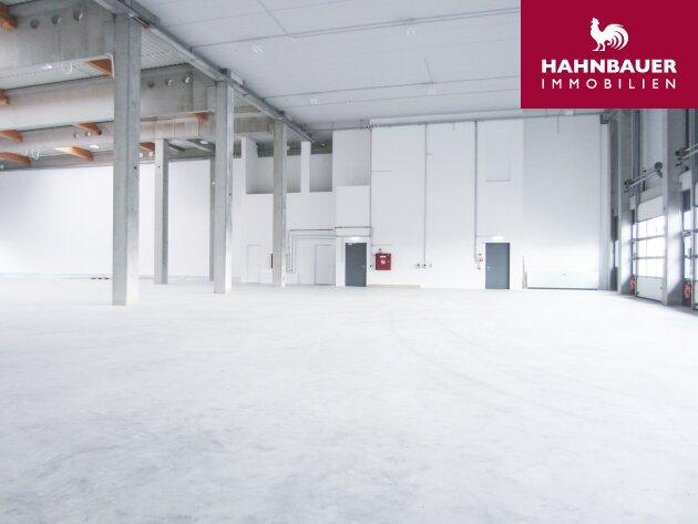Lagerhalle 2350 m2 + Büro 341 m2 Kombination südlich von Wien in Wr. Neudorf