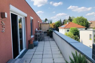 Penthouse in sehr guter Lage in Wels.