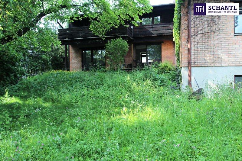 Naturidylle ! Absolute Toplage ! Südseitiges Traumgrundstück mit ausbaubarem Haus in Hinterbrühl ! /  / 2371Hinterbrühl / Bild 2