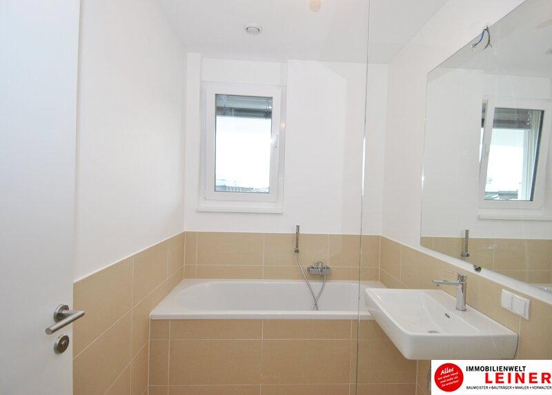 Schwechat - 57 m² Mietwohnung mit Terrasse im Zentrum - Erstbezug Objekt_9320 Bild_684