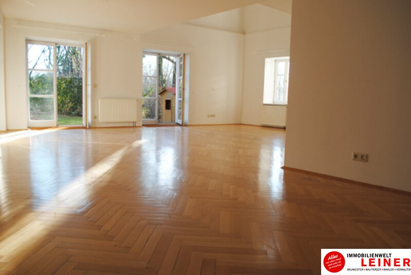 6 Zimmer Bürogebäude/Praxis in geschichtsträchtigem Gebäude nahe Wien Objekt_10771 Bild_204