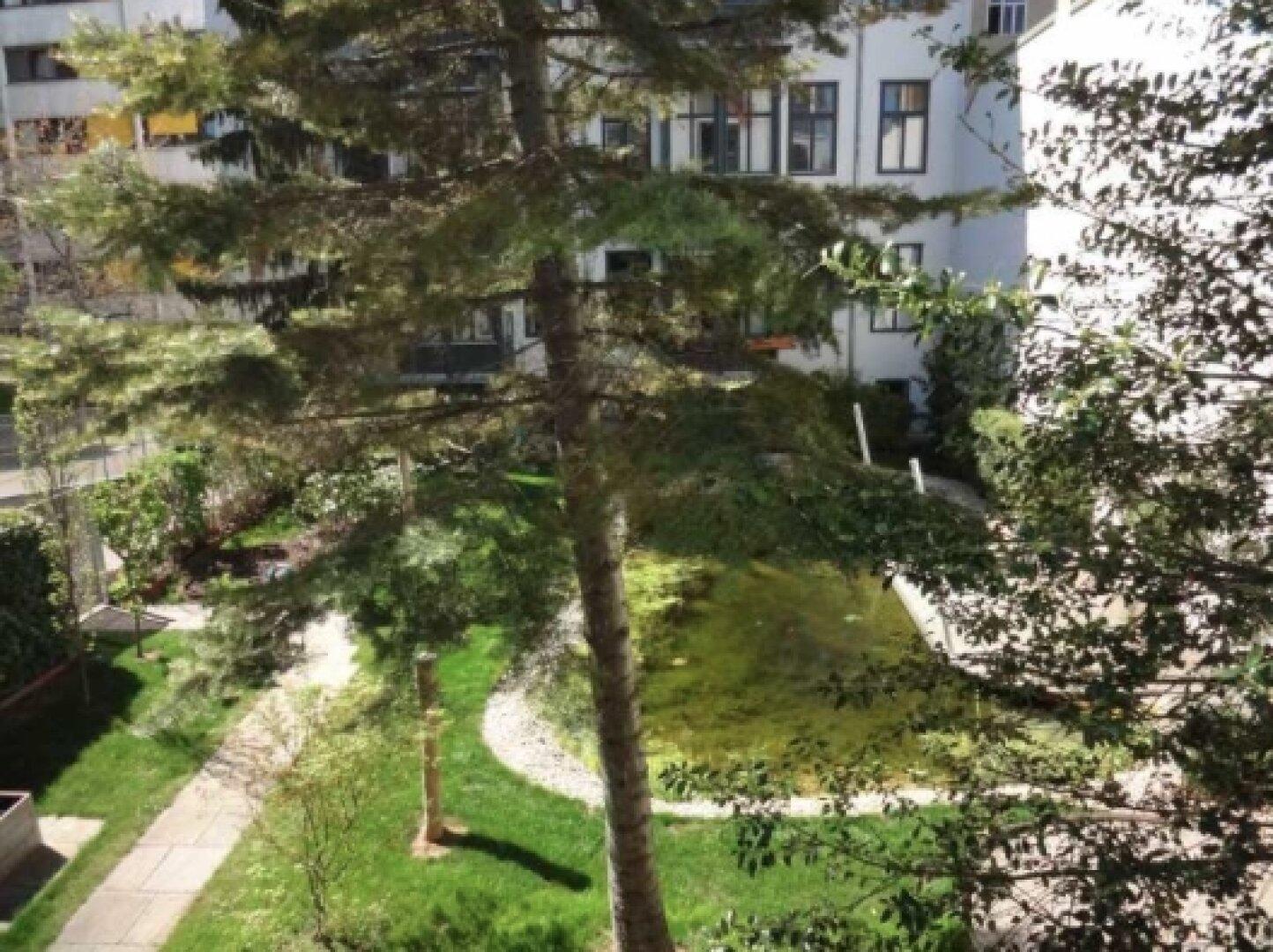 Blick von der Veranda auf Haus und Garten 1