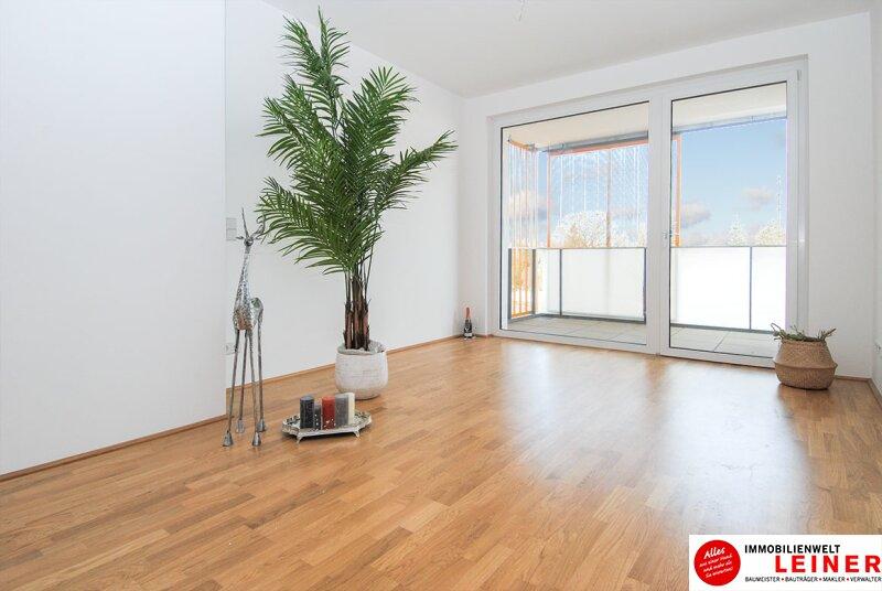 *UNBEFRISTET*BARRIEREFREI* 14 m² Terrasse * Schwechat - 2 Zimmer Mietwohnung im Erstbezug mit großer Terrasse Objekt_8818