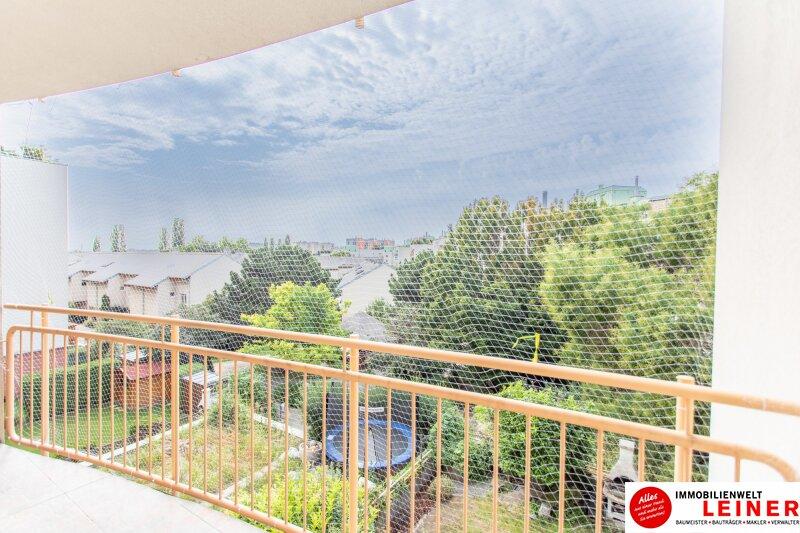Herrlich Wohnen im 11. Bezirk: barrierefreie Eigentumswohnung mit Terrasse in der schönen Holzergasse Objekt_11224 Bild_257