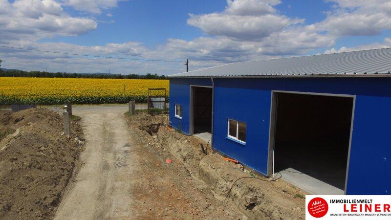 ERSTBEZUG! Neu errichtete LAGERHALLEN direkt an der Bundesstraße - Nähe Autobahn S1 Objekt_8920 Bild_700