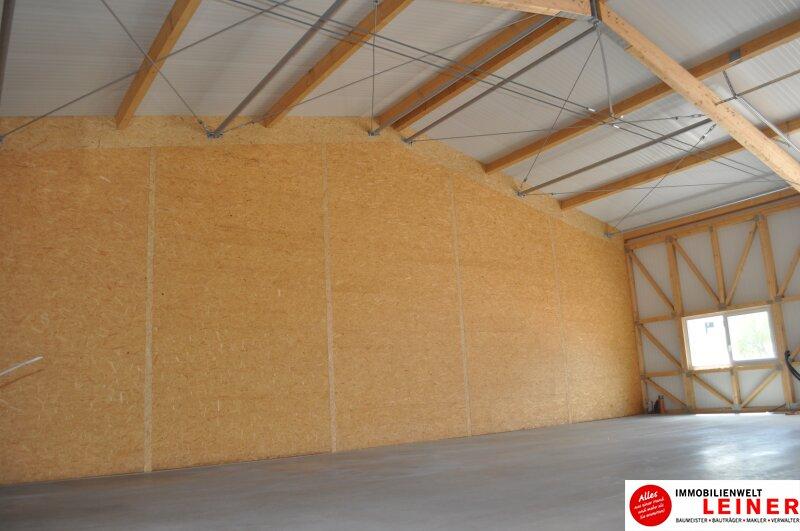 ERSTBEZUG! Neu errichtete LAGERHALLEN direkt an der Bundesstraße - Nähe Autobahn S1 Objekt_8920 Bild_706