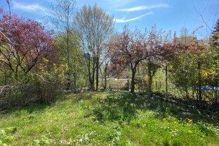 Traumhafte Gartenwohnung in Ober St. Veit