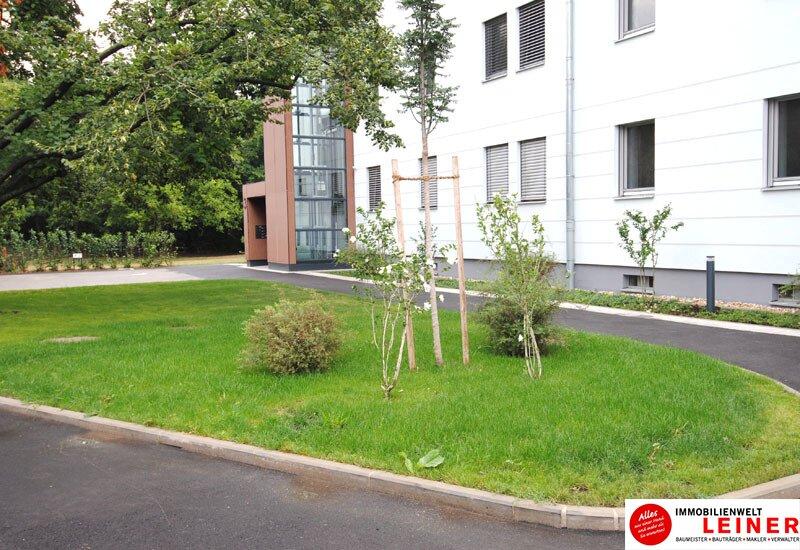 Schwechat - Rannersdorf:  ruhige 2 Zimmer - 50 m² Mietwohnung mit bester Verkehrsanbindung! Objekt_9823 Bild_603