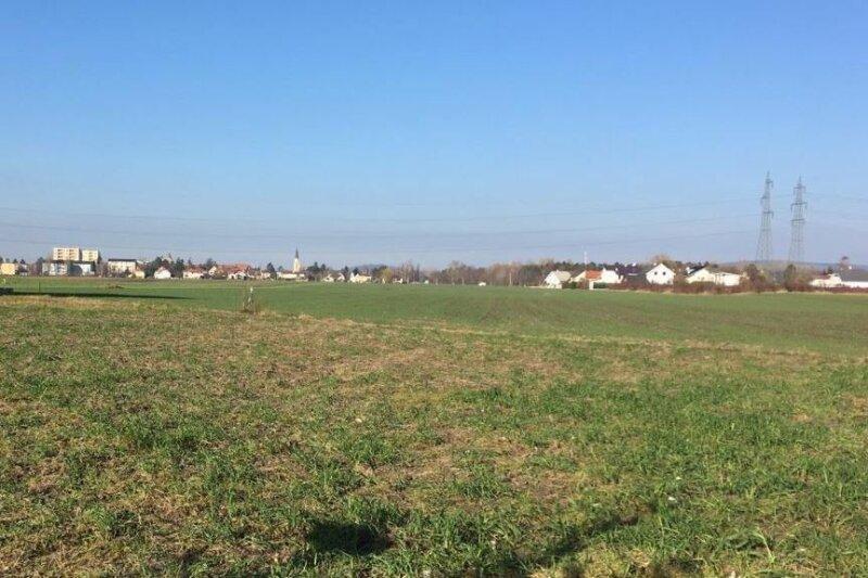 Grundstück, 2102, Bisamberg, Niederösterreich